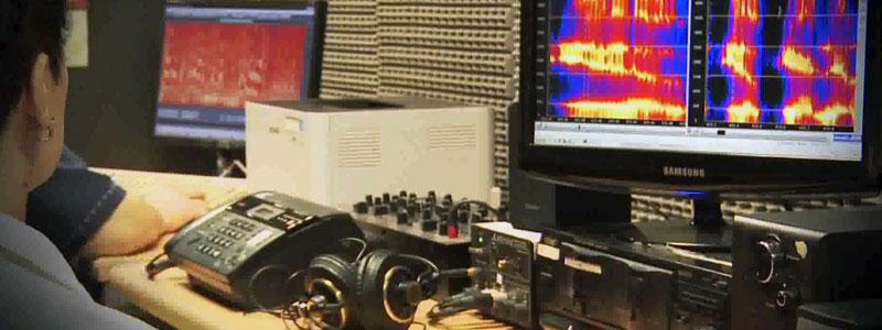 pericia-de-audio2